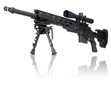 ARES MS338 CNC Sniper Rifle (Black)
