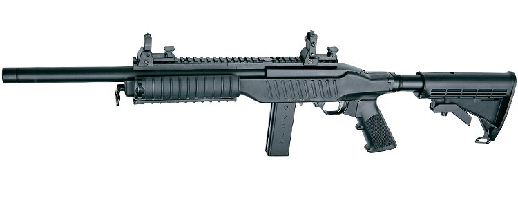 ASG 10/22 Special Teams Carbine